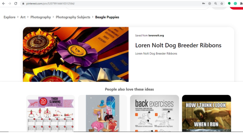 Loren Nolt dog breeder pinterest images