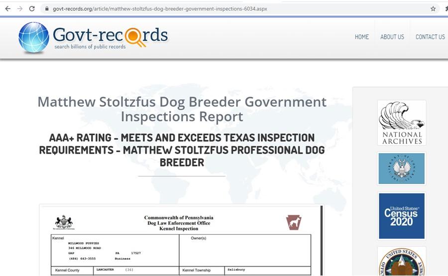 Matthew Stoltzfus dog breeder Inspection Records