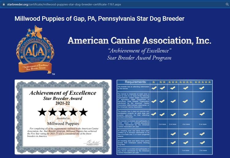 Millwood Puppies Kennels Star Breeder Certificate